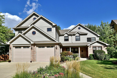 Elmhurst Single Family Home Price Change: 411 South Arlington Avenue