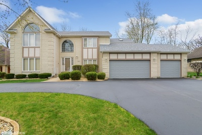 Olympia Fields Single Family Home For Sale: 2511 Glen Eagles Drive