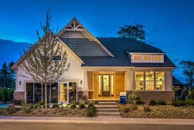 Naperville Single Family Home For Sale: 4043 Lobo Lane