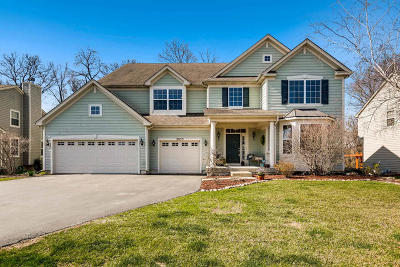 Elgin Single Family Home For Sale: 2033 Padua Drive