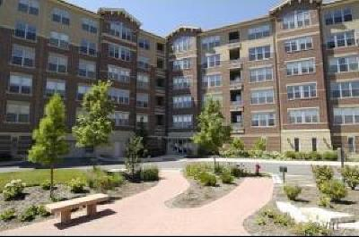 Skokie Condo/Townhouse For Sale: 9350 Skokie Boulevard #504