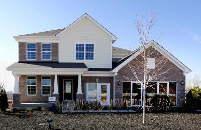 South Elgin Single Family Home For Sale: 712 Heartland Lane