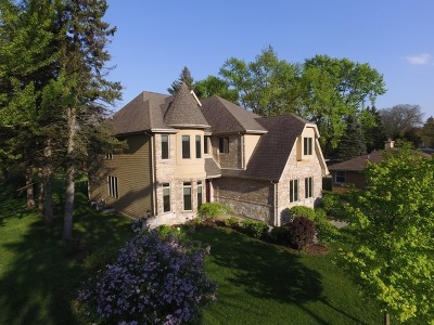 Downers Grove Single Family Home For Sale: 5919 Dunham Road