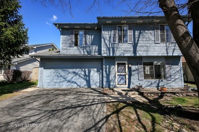 Lisle Single Family Home For Sale: 2778 Greenfield Drive
