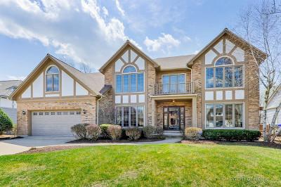 Wheaton Single Family Home Price Change: 117 Hawkins Circle