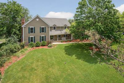 Mokena Single Family Home For Sale: 17663 Haas Road