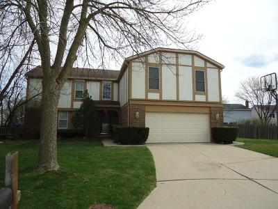 Buffalo Grove Single Family Home For Sale: 1010 Highland Grove Court