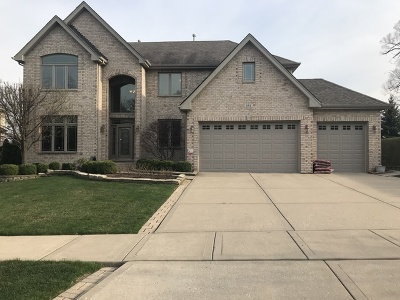 Woodridge Single Family Home For Sale: 945 Internationale Parkway