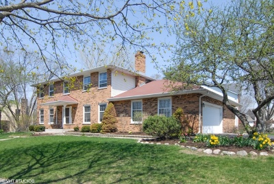 Naperville Single Family Home For Sale: 925 Hidden Lake Road