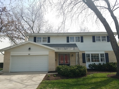 Mount Prospect Single Family Home For Sale: 811 South Waverly Place
