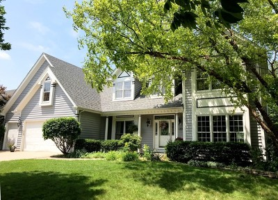 Naperville Single Family Home New: 839 Lockwood Circle