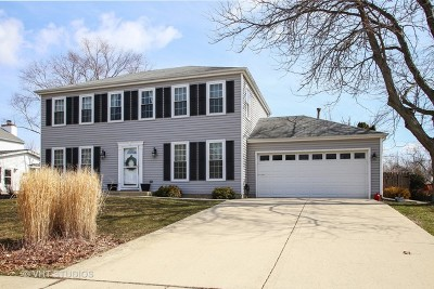Schaumburg Single Family Home For Sale: 509 Tadmore Court