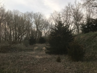 Ogle County Residential Lots & Land For Sale: 8248 North Kishwaukee Road