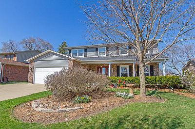 Schaumburg Single Family Home For Sale: 1042 Lighthouse Drive