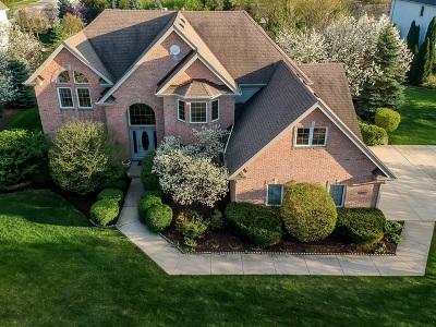 Burr Ridge Single Family Home For Sale: 6912 Fieldstone Drive