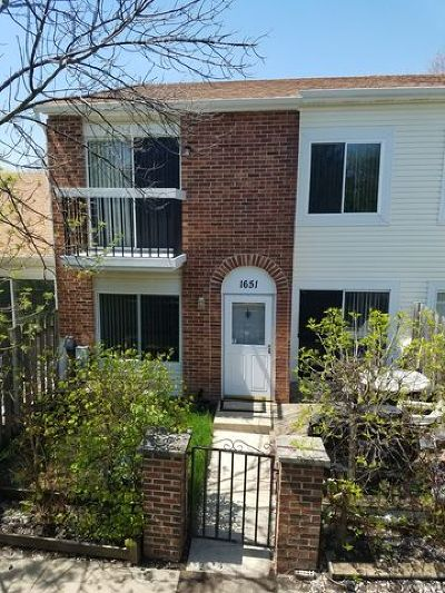 Hoffman Estates Condo/Townhouse For Sale: 1651 Islandview Court