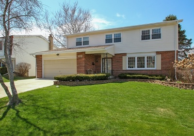 Mount Prospect Single Family Home For Sale: 1118 South Cherrywood Drive