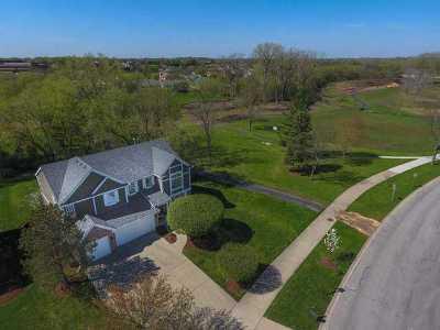 Buffalo Grove Single Family Home For Sale: 316 Checker Drive