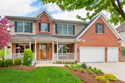 Winfield Single Family Home For Sale: 27w452 Waterford Drive