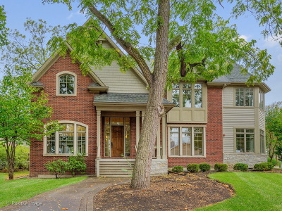 Glen Ellyn Single Family Home For Sale: 340 Brandon Avenue