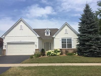 Oswego Single Family Home For Sale: 301 Edgebrook Court