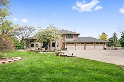 Kane County Single Family Home For Sale: 5n737 Dunham Trails Road