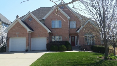 Westmont Single Family Home For Sale: 821 Megan Court