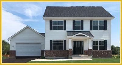Elgin Single Family Home For Sale: 806 Richwood Avenue
