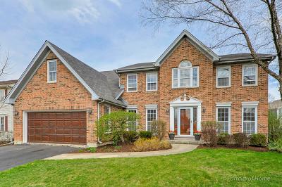 Wheaton Single Family Home For Sale: 1n051 Falcon Trail