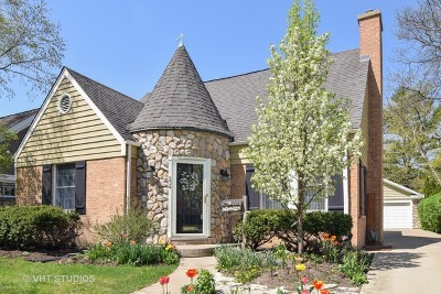 Arlington Heights Single Family Home For Sale: 534 South Chestnut Avenue