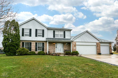 Tinley Park Single Family Home Contingent: 17643 Dover Court