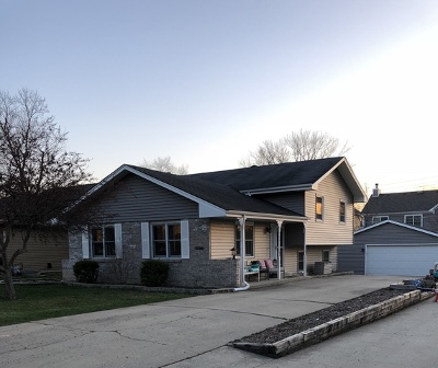 Warrenville Single Family Home For Sale: 3s644 West Avenue
