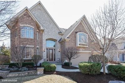 Naperville Single Family Home For Sale: 3820 Junebreeze Lane