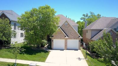 Westmont Single Family Home For Sale: 817 Shannon Lake Court