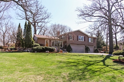 Lake Zurich Single Family Home For Sale: 21733 West Glendale Road
