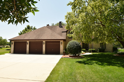 Bolingbrook Single Family Home For Sale: 8 Roanoke Court