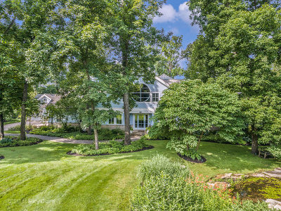 Kane County Single Family Home For Sale: 446 Courtney Circle