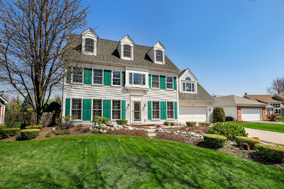 Naperville Single Family Home For Sale: 1023 Ferncroft Court