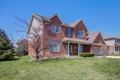 Lockport Single Family Home For Sale: 15054 South Hunters Way