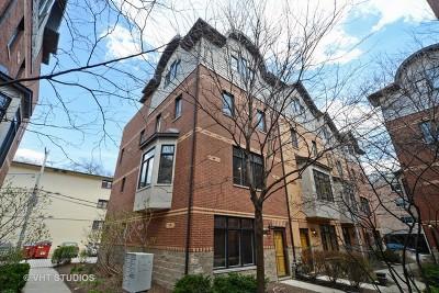 Oak Park Condo/Townhouse For Sale: 1023 Lincoln Trail