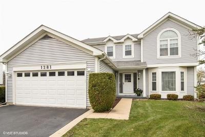 Barrington Single Family Home For Sale: 1281 Berkshire Lane