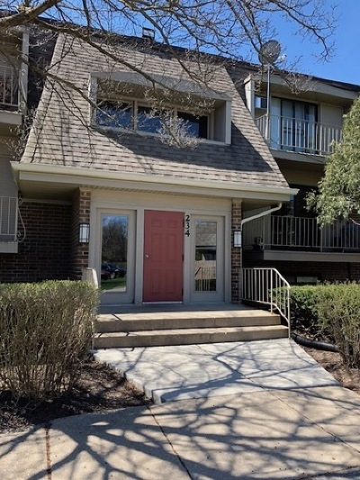 Naperville Condo/Townhouse For Sale: 234 East Bailey Road #M
