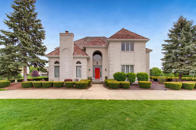 Orland Park Single Family Home New: 113 Singletree Road