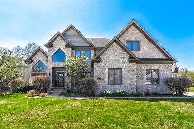Aurora Single Family Home For Sale: 2055 Red Maple Lane