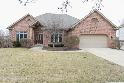 Naperville Single Family Home For Sale: 427 Millcreek Lane