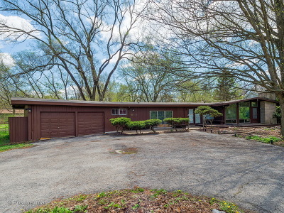 Glen Ellyn Single Family Home For Sale: 1s759 Park Boulevard