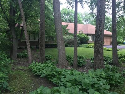 Elburn Single Family Home For Sale: 4n515 Deerslayer Drive