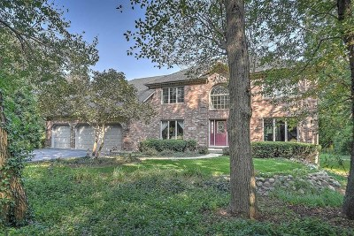 St. Charles Single Family Home For Sale: 39w098 Dean Lane