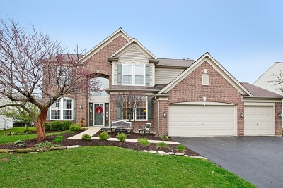Bolingbrook Single Family Home For Sale: 3 Firethorn Court