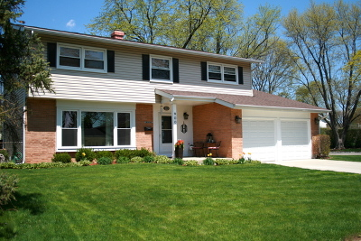 Mount Prospect Single Family Home For Sale: 900 North Greenfield Lane